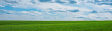 Green Grass Field And Blue Sky With Clouds Panorama