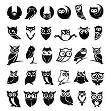 Set Of Owl Icon Collection