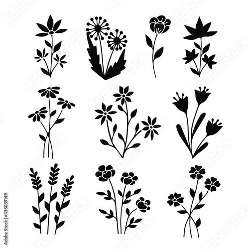 Vászonkép Wildflower silhouette line art set