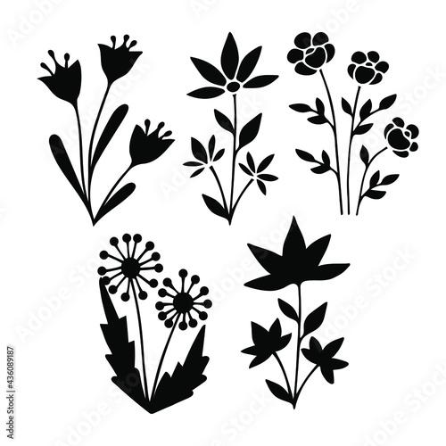 Wildflower silhouette line art set Tapéta, Fotótapéta