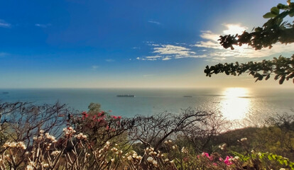 Beautiful view of the sea and coastline in Vung Tau. Ships ,Trees and Slopes. Vietnam. South-East Asia