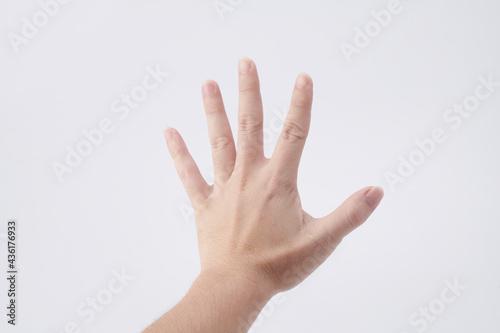 Canvastavla left hand isolated on white background