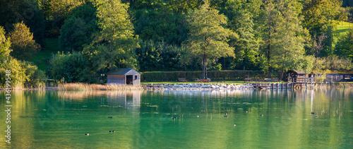 Fotografie, Obraz Idylle am Wolfgangsee - Bootshäuser und Hütten am Ufer, Enten auf dem Wasser