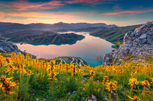 Fantastic Sunrise On Bovilla Lake, Near Tirana City Located. Spectacular Spring Landscape With Blooming Yellow Flowers. Perfect Outdor Scene Of Albania, Europe. Beauty Of Nature Concept Background..