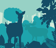 Silhouette Deer In Forest