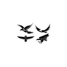 Bird Eagle Falcon Animal Feather Vector Logo