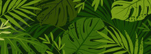 Green Background With Tropical Plant Leaves And Texture. Editable Vector Template For Wallpaper, Banner, Invitations, Flyers, Advertisements, Posters