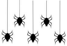 Set Of Spider Silhouettes
