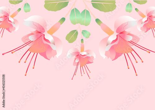 Obraz na płótnie Fuchsia pink flower