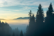 Rural Valley On Foggy Sunrise. Wonderful Nature Scenery Of Forested Apuseni Mountains, Romania. Wonderful Weather With Glowing Clouds On The Sky