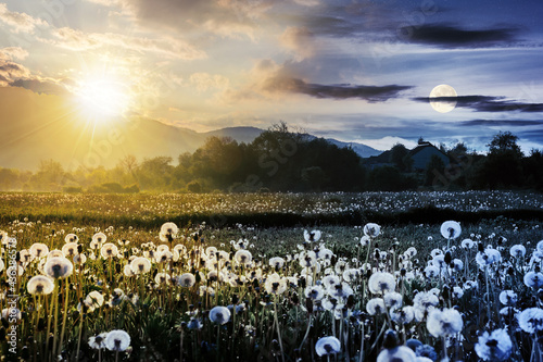 day and night time change concept above dandelion field in rural landscape. beautiful nature scenery with blooming weeds. clouds on the sky with sun and moon above the distant mountain #436386578