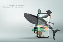 Online Education With A Concept Of Knowledge And Imagination Offers Mobile Phone Book Whale Tree House Macaw Diploma And Submarine On Gradient Blue Background With Text Illustration 3D Rendering