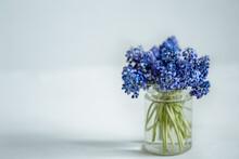 A Miniature Bouquet Of Muscari Flowers In A Transparent Vase Copy Space.
