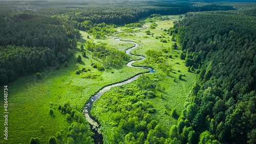 Fotografie, Obraz Curvy river and marshland. Aerial view of wildlife in Poland.