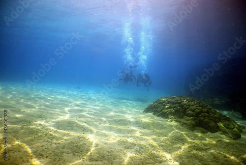 Foto scuba diver , coral reef , caribben sea
