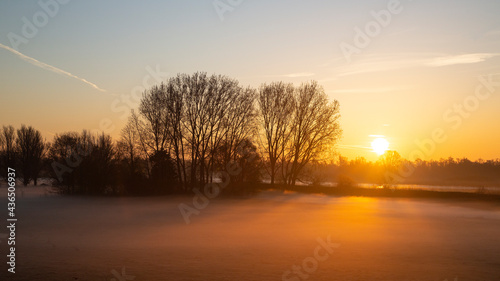 Canvas Print Polder in Dutch Biesbosch National Park covered by fog during sunrise