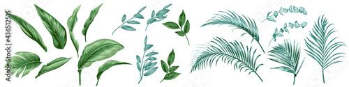 Billede på lærred Set of tropical leaves for textile design