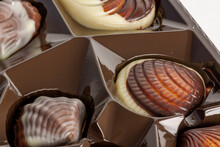 Closeup Of Seashell Chocolates On A Brown Container