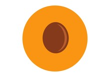 Apricot Half. Vector Graphics On A White Background. Geometric Flat Style.