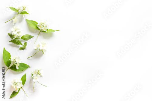 White jasmine flowers with green leaves flat lay Fototapet