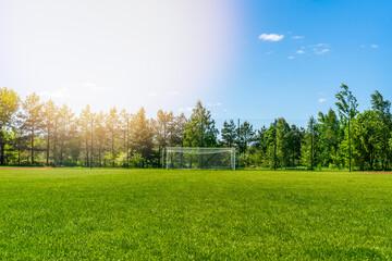Green grass on the football stadium