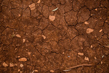 Top View Of Dry Ground With Cracked Texture