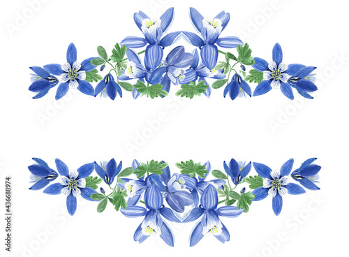 Canvas frame of blue aquilegia flowers, watercolor
