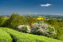 Landschaft Lipper Keuper Bergland Frühling Sonnig