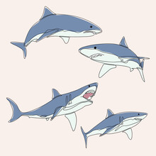 Minimalist Line Art Style Bundle Four Shark Fish Illustration And One Line Art. Creative For Wall Decoration, Postcard Or Brochure Cover Design And Cover Book .editable And Suitable For Templates.