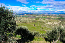 Valley Of Basilicata With Calanchi Hills, Olive Trees And Mountains