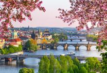 Bridges Over Vltava River In Prague At Spring Sunset, Czech Republic