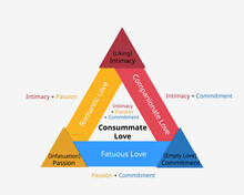 Triangular Theory Of Love To Show The Three Components Of Love