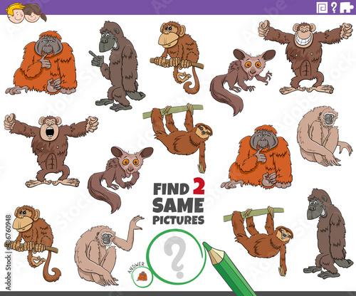 Fototapeta premium find two same cartoon animals educational game