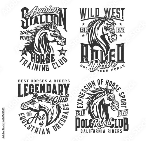 Canvas Print Stallion horse and wild mustang vector t-shirt print mockups