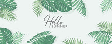 Minimalist Summer Banner Design With Tropical Leaves Theme