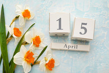 Beautiful Daffodils And Calendar On Color Background