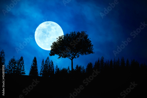 Obraz na płótnie Blue Moon and stars. Blue moon rising over hill in the twilight.