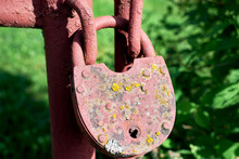 An Old Rusty Lock, Covered With Moss And Lichen On The Gate. An Abandoned Garden.