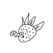 One Vector Wormy Strawberry For Halloween.Simple Illustration Of Black Line Elements Hand Drawn In Doodle Style On White Isolated Background.Design For Greeting Cards, Web, Social Media, Packages.