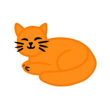 Cute Ginger Kitten Is Sleeping. White Background. Vector Illustration Can Be Used For Various Menu Posters Banners