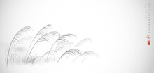 Leaves Of Grass Hand Drawn With Ink On White Background. Traditional Oriental Ink Painting Sumi-e, U-sin, Go-hua. Translation Of Hieroglyph - Harmony.