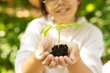 Smiling Asian Girl Wearing Glasses And Holding Plant In Garden