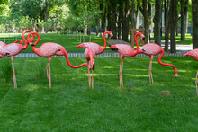 Statues Of Pink Flamingos In The City Park