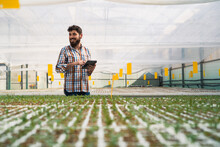 Man Checking Plants In A Greenhouse