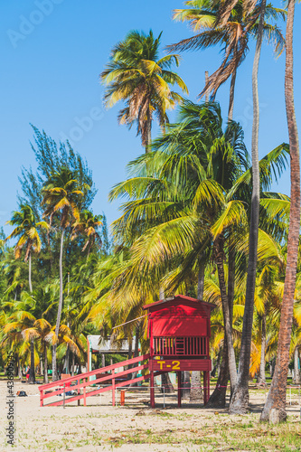 Tablou Canvas Red Life guard hut and palm trees on tropical beach