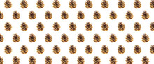 Black Pine Cone On A White Background