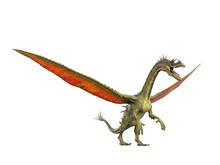 Snouted Dragon Is Standing Up