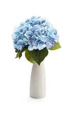 Subject Shot Of White Ceramic Vase With Bouquet Of Pale Blue Hydrangeas. Bouquet Of Refined Flowers Is Isolated On The White Background.
