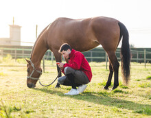 Young Man Browsing Smartphone Near Horse Grazing In Ranch