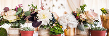 Decorations With Flowers And Plants. Wedding Reception, Table Setting Decor